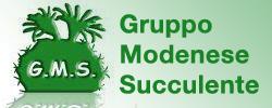 Gruppo Modenese Succulente